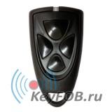 Брелок DTM System EcoVictory-4 black